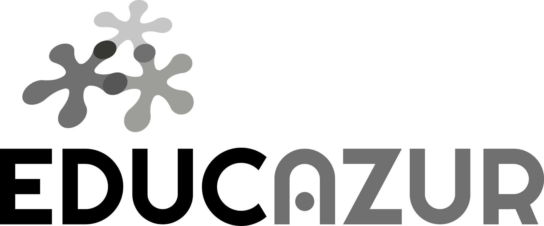 LOGO EDUCAZUR nb